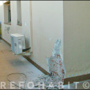 Arreglo de humedades en fachada, casa ubicada en El Masnou Barcelona