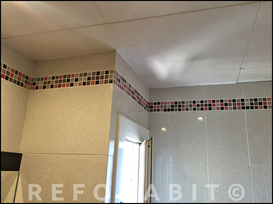 0415-reforma-baño-cenefa-hecha-con-gresite