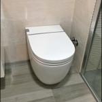 Detalle del inodoro WC suspendido ROCA.